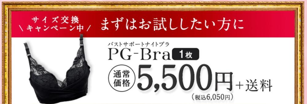 PGブラ単品購入